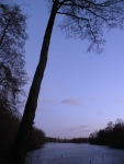 Sonnenuntergang am Norduferweg des Plötzensees