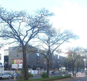 Müllerhalle Kaufland