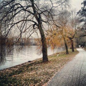 Park am Nordhafen
