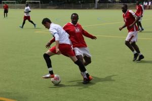 SD.Fußball 221