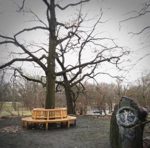 Schiller-Eiche Schillerpark